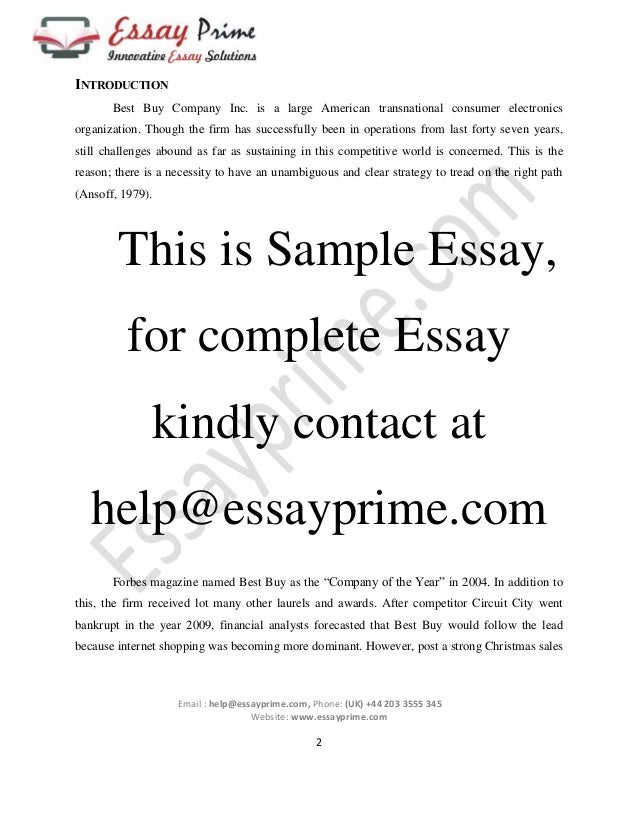 strategic management essay sample 4