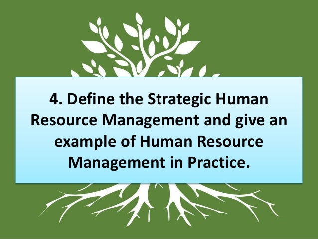 human resource management in blue bird Nlu's master's in human resources management & development can help advance your career in human resources explore our master's in human resources degree ms in human resource management and development.