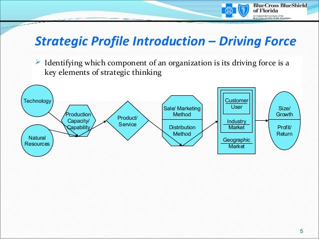 Strategic Profile Introduction