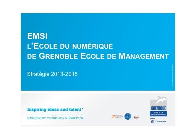 EMSI L'ECOLE DU NUMÉRIQUE DE GRENOBLE ECOLE DE MANAGEMENT Stratégie 2013-2015