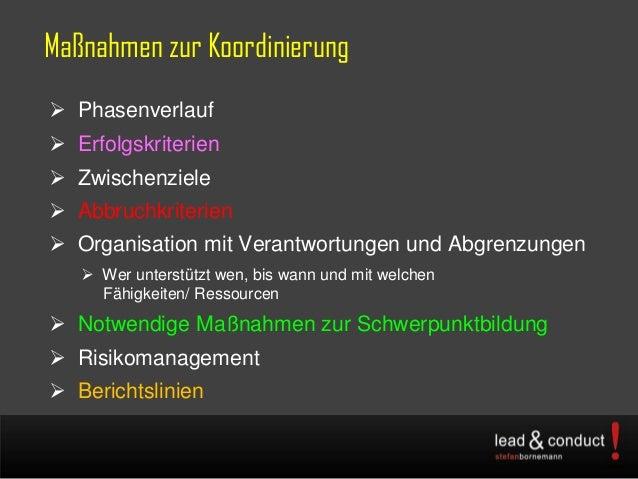 Maßnahmen zur Koordinierung Phasenverlauf Erfolgskriterien Zwischenziele Abbruchkriterien Organisation mit Verantwort...