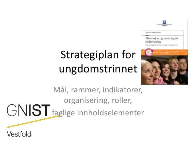 Strategiplan for ungdomstrinnetMål, rammer, indikatorer,    organisering, roller,faglige innholdselementer