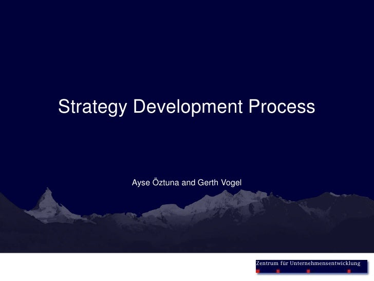 Strategy Development Process<br />Ayse Öztuna and Gerth Vogel<br />