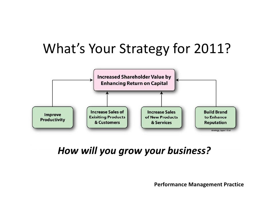 What'sYourStrategyfor2011?  Howwillyougrowyourbusiness?                      PerformanceManagementPractice