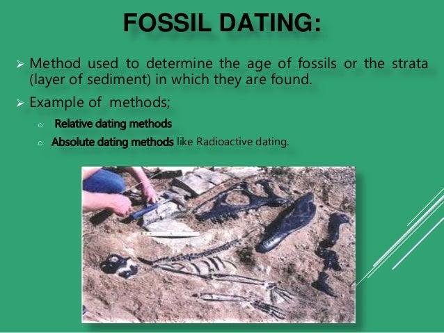 radiometrisk dating fossil alder