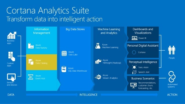Cortana Analytics Workshop Azure Data Catalog