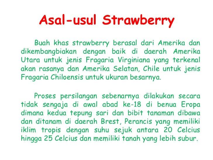 Manfaat Strawberrydapat membantu melumpuhkan kerja aktif kanker karena asam ellagic yang dikandungnya.dapat meredam geja...