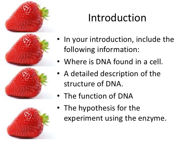 strawberry dna lab Extracting strawberry dna adapted from   education/modules/strawberryextractioninstructionspdf for a group of 5 students  with.