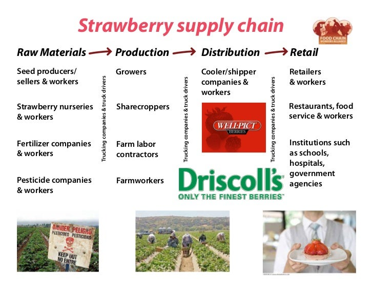 Strawberry supply chainRaw Materials                                               Production                             ...