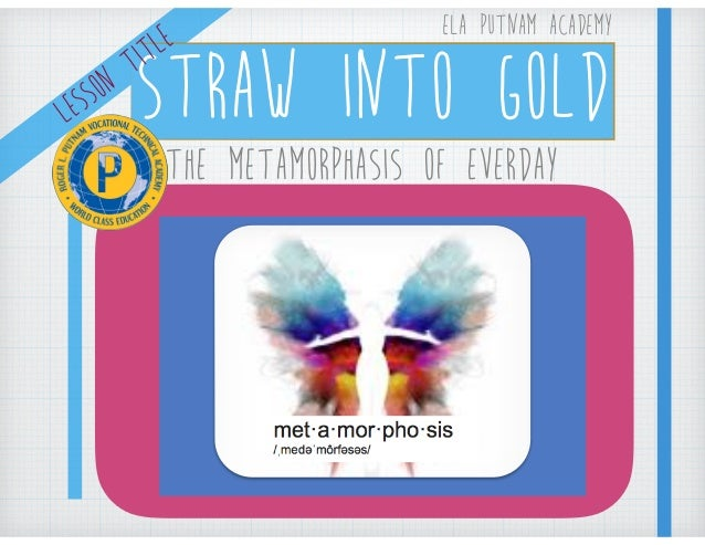 straw into gold the metamorphosis of the everyday summary