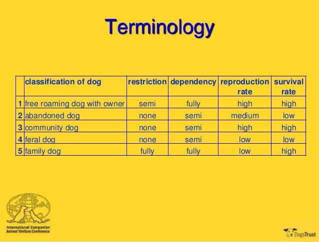 classification of dog owners