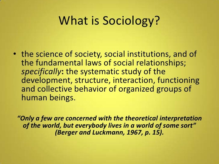 Why is the study of sociology important?