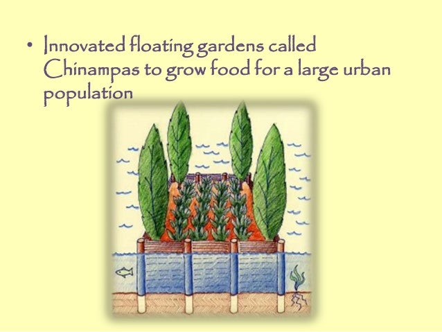 • Innovated floating gardens called Chinampas to grow food for a large urban population