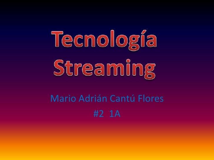 Mario Adrián Cantú Flores<br />#2  1A<br />Tecnología Streaming<br />
