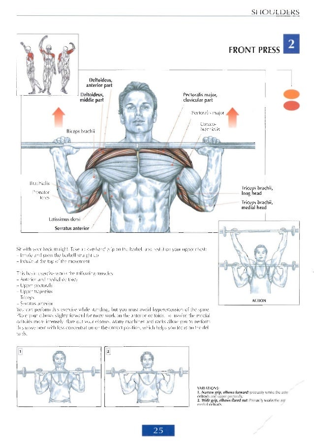 Awesome Delavier Strength Training Anatomy Collection - Anatomy And ...