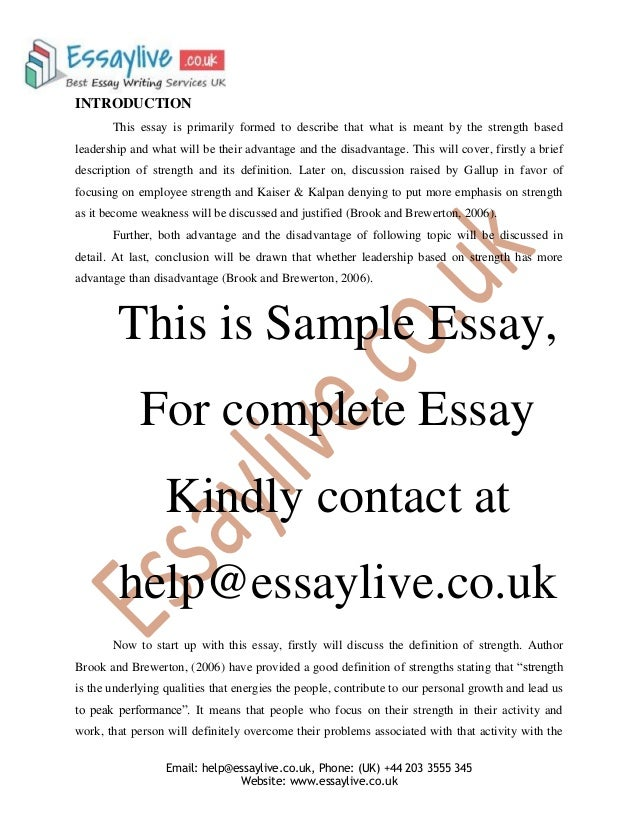 Examples Of An Essay Strength Based Leadership  Plans For The Future Essay also College Essays Online Strength Based Leadership Essay Sample Novel Essay Example