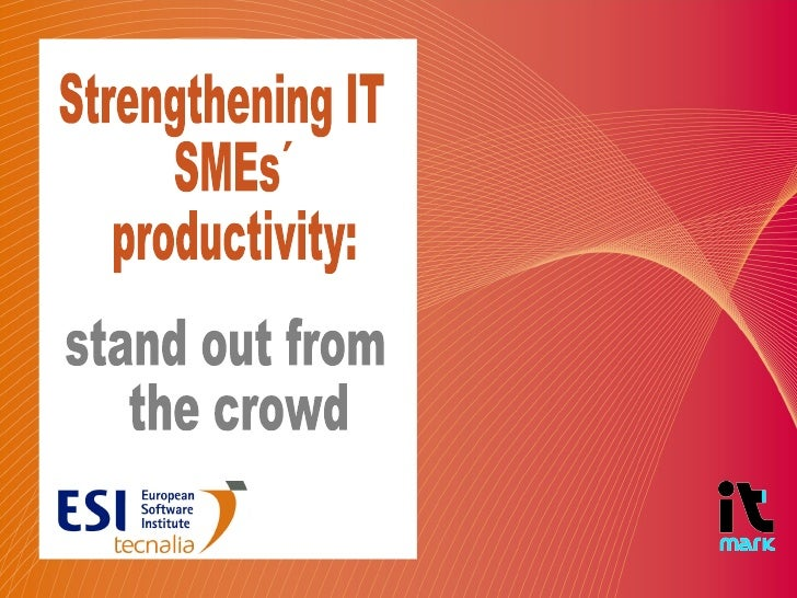 Strengthening IT SMEs´ productivity:  stand out from the crowd