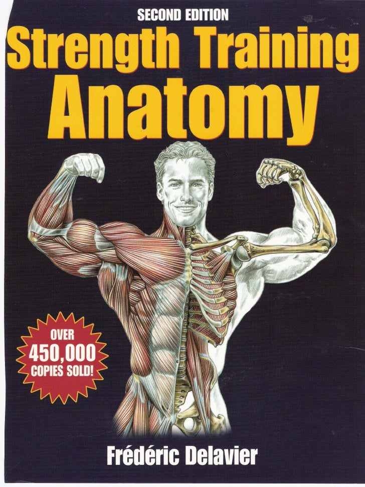 strength training anatomy pdf تحميل