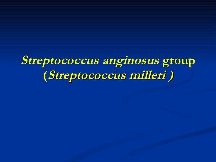 Streptococcus anginosus  group ( Streptococcus milleri )
