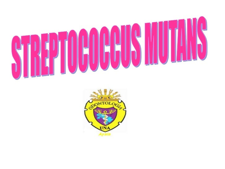 STREPTOCOCCUS MUTANS<br />