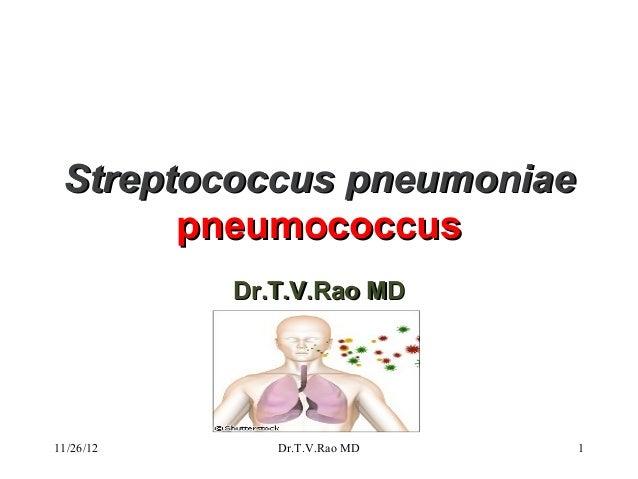 Streptococcus pneumoniae       pneumococcus           Dr.T.V.Rao MD11/26/12      Dr.T.V.Rao MD   1