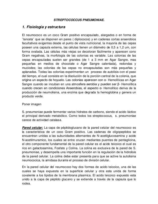 STREPTOCOCCUS PNEUMONIAE. 1. Fisiología y estructura El neumococo es un coco Gram positivo encapsulado, alargados o en for...
