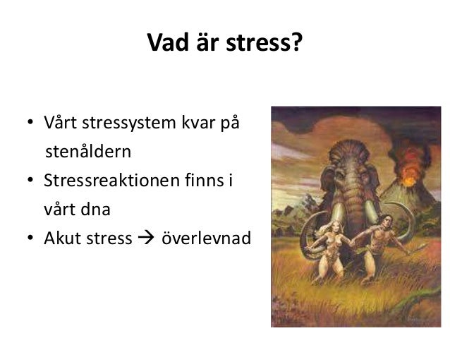 vad är stress