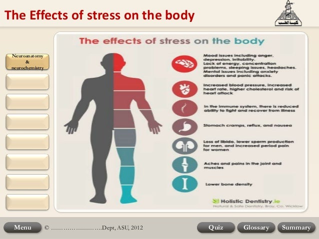 physiological activities of the body during a fight or flight in response to stress and fear Initial models of stress concentrated on physiological processes and the fight or flight response compelling the body to work harder than it needs to.