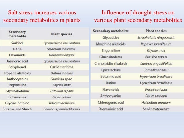 Salt stress increases various secondary metabolites in plants Influence of drought stress on various plant secondary metab...