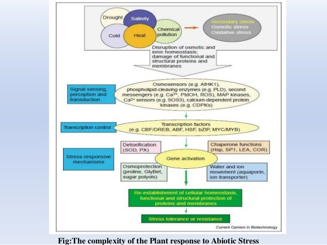 Fig:The complexity of the Plant response to Abiotic Stress