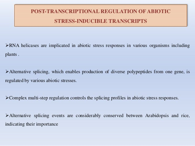 POST-TRANSCRIPTIONAL REGULATION OF ABIOTIC STRESS-INDUCIBLE TRANSCRIPTS RNA helicases are implicated in abiotic stress re...