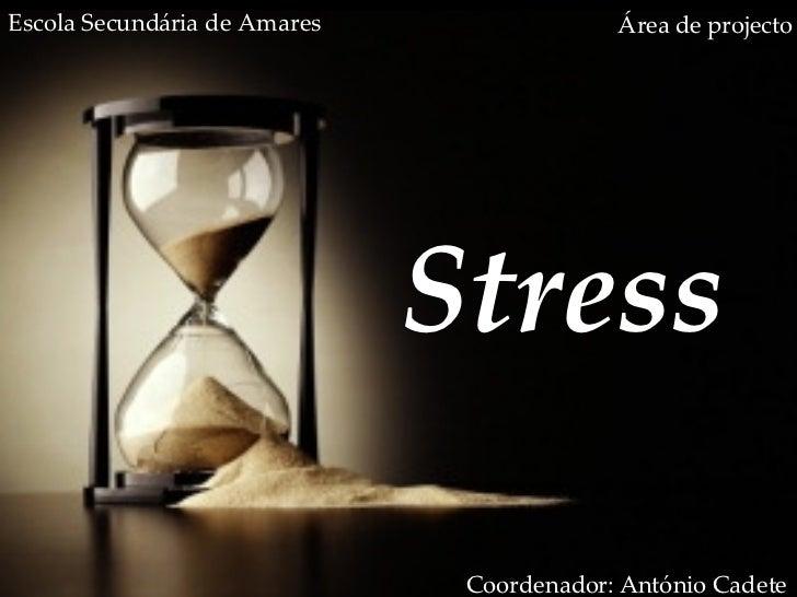 Stress Área de projecto Coordenador: António Cadete Escola Secundária de Amares