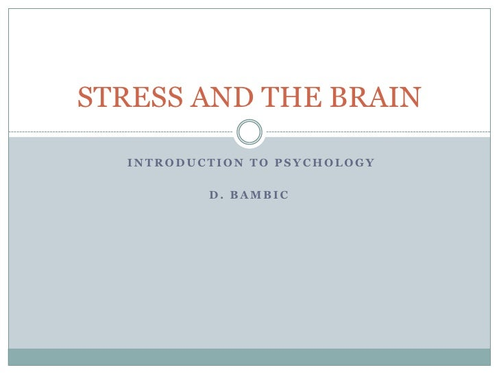 STRESS AND THE BRAIN  INTRODUCTION TO PSYCHOLOGY          D. BAMBIC