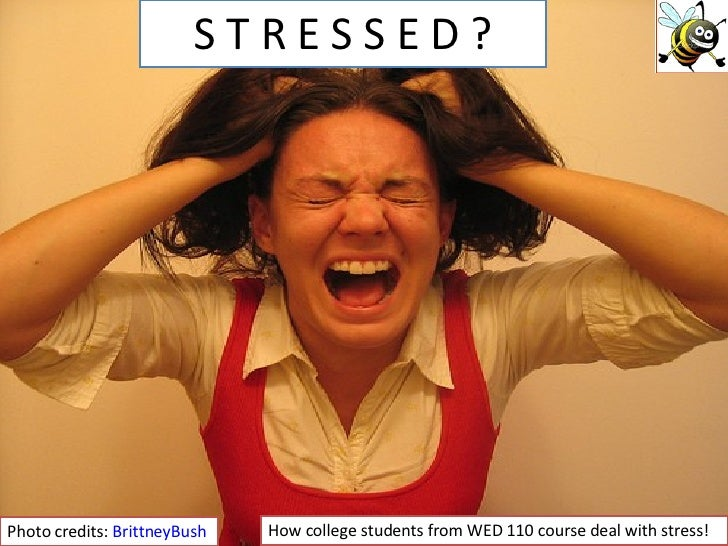 S T R E S S E D ? Photo credits:  BrittneyBush How college students from WED 110 course deal with stress!