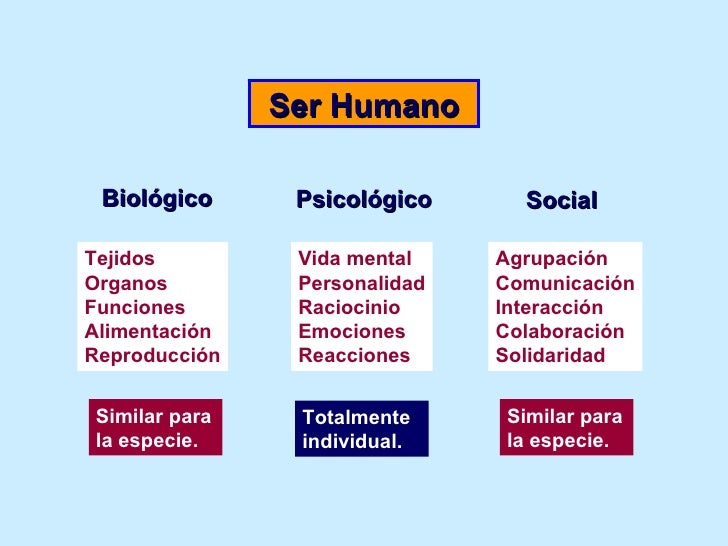 Stress Laboral Slide 3