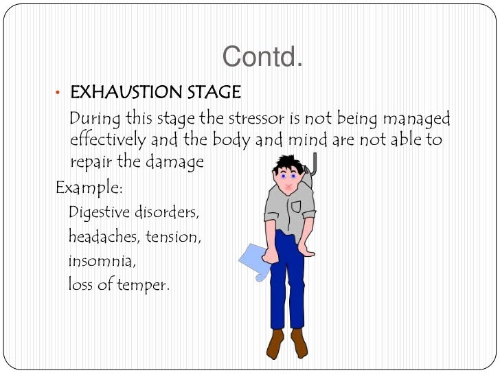 reaction on stress management seminar essay Free essay: the importance of stress management stress today can be described as that which disturbs a person's mental and physical well-being.