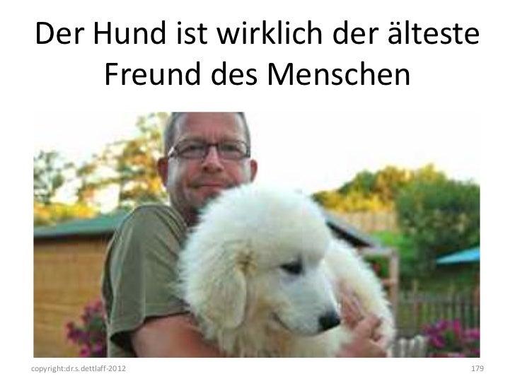 Der Hund ist wirklich der älteste      Freund des Menschencopyright:dr.s.dettlaff-2012     179