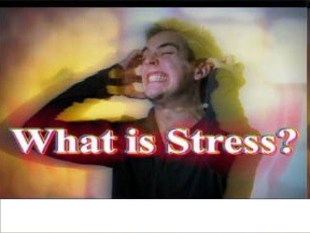 WHAT IS STRESS?  10/27/13  3
