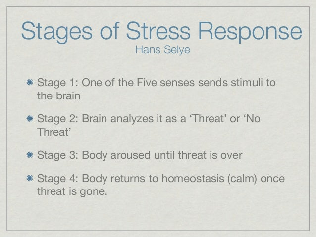 stages of stress response essay Health chapter 3 stress quizlet about stress study play what is stress what are the three stages of the stress response list in the order in which they occur.