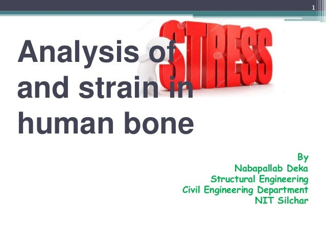 an introduction to the analysis of bones Introduction to global bone metastasis industry an overview of bone metastasis global market analysis bone metastasis market by value market by volume .