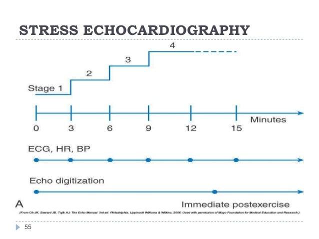 STRESS ECHOCARDIOGRAPHY 55