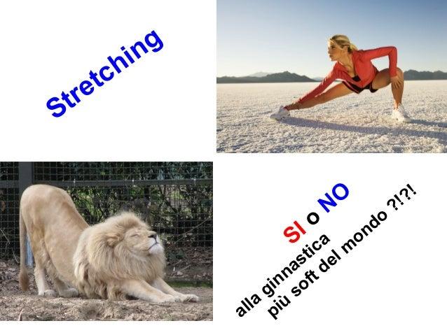 Stretching SI o NO alla ginnastica più soft del m ondo ?!?!