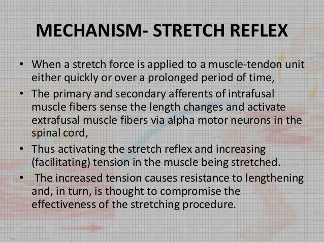 Stretching Slide 3