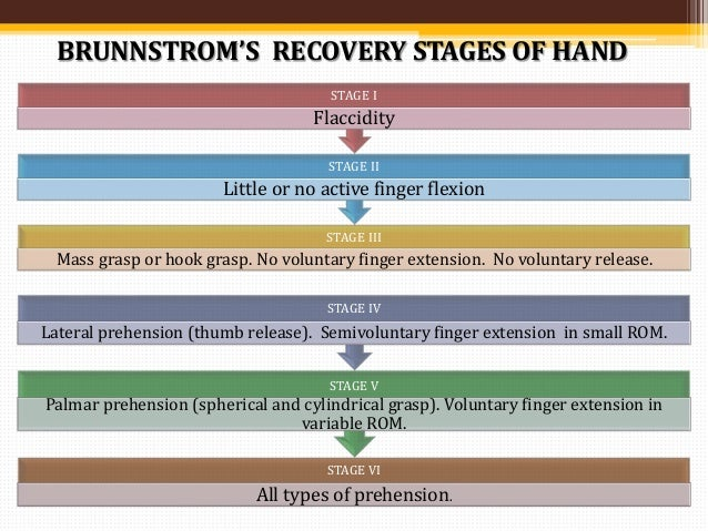 BRUNNSTROM STAGES OF RECOVERY STROKE PDF