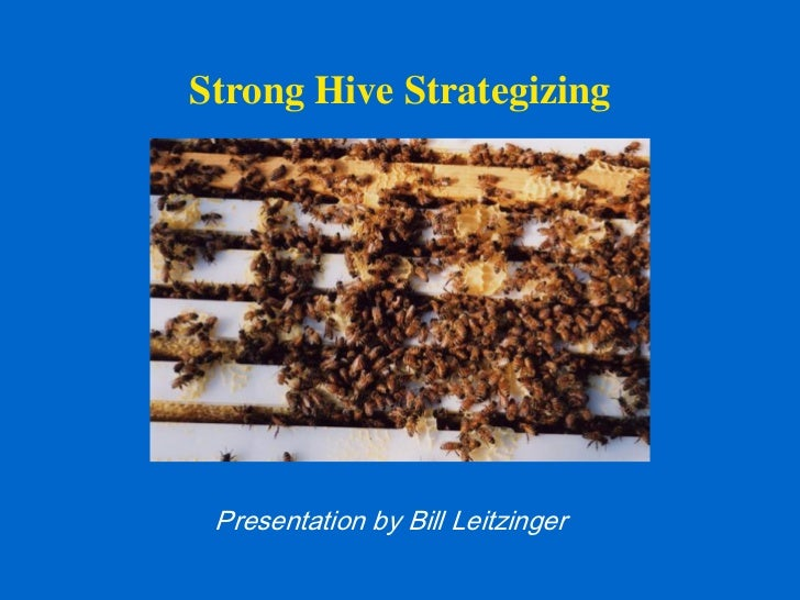 Strong Hive Strategizing Presentation by Bill Leitzinger