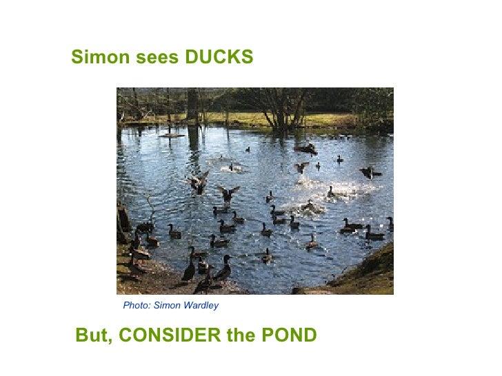 Simon sees DUCKS But, CONSIDER the POND Photo: Simon Wardley