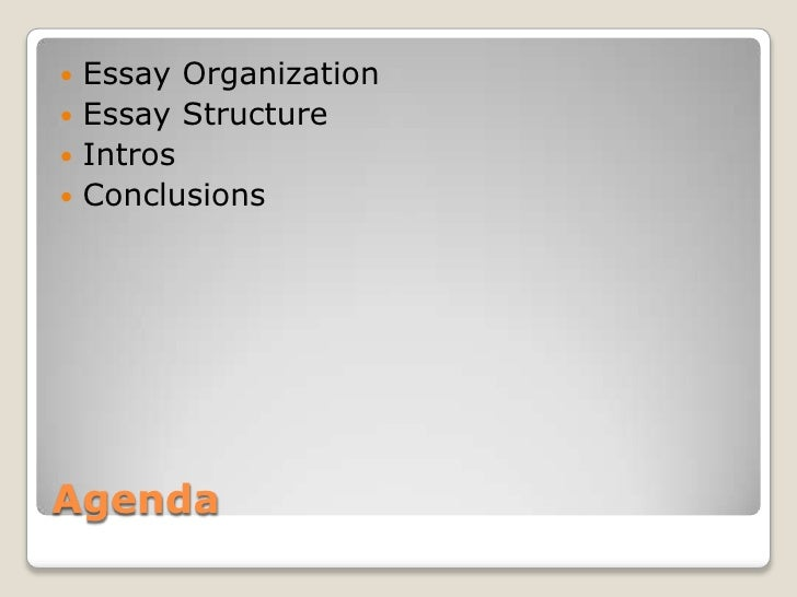 essay on organisation structure At the end of this session, participants should be able to understand and appreciate: 1 the concept of an organization 2 principles of organizational structuring 3 traditional and modern types of organizational structure 4 considerations in choosing an organizational structure.