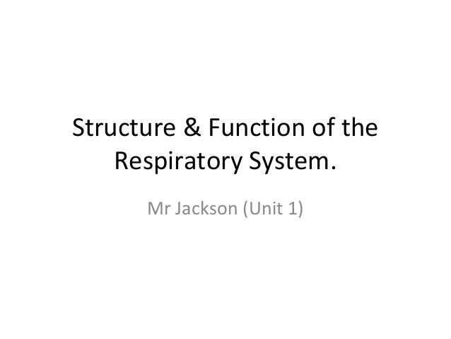 Structure & Function of the Respiratory System. Mr Jackson (Unit 1)