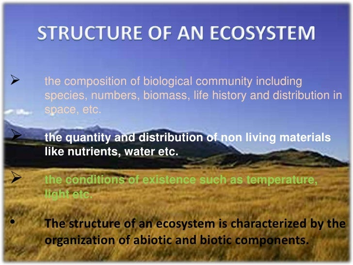 ecosystem structure paper Ecosystem essay balancing ecosystems  structure made of wood  freshwater aquatic ecosystems this paper will discuss freshwater aquatic ecosystem.