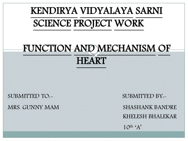 Structure and function of heart by Shashank Bandre Class ...